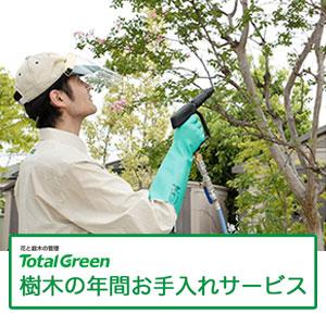 樹木の年間お手入れサービス